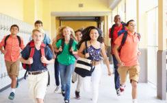 Заканчивается набор на программу школьного обмена в США  на 2021-2022 гг