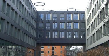 Европейский Университет — European University